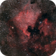 NGC 7000 North America Nebula,                                FedericoCarolloAs...