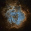 Rosette Nebula SHO,                                Seth