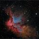NGC 7380 (The Wizard Nebula),                                Randal Healey