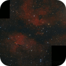 IC 1318 Mosaic,                                diurnal