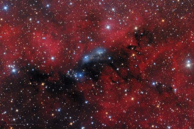 NGC6914,                                Péter Feltóti