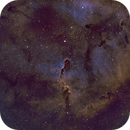 IC 1396, The Elephant Trunk Nebula in SHO,                                riot1013