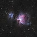 Orion Nebula,                                agard