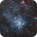 Tarantula Nebula Remade and Cropped,                                Tom Peter AKA Astrovetteman