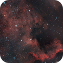 NGC 7000 - The North America Nebula,                                lefty7283