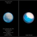 Uranus new comparison,                                Uwe Meiling