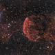 IC443 Jellyfish Nebula - RVB only,                                Jocelyn Podmilsak