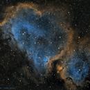 IC1848 - SHO,                                José Tapia Janet