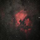 NGC 7000 & IC 5070,                                Wolfgang Ransburg