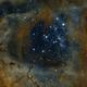 Rosette nebula,                                Cristian Danescu