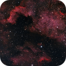 NGC 7000 & IC 5070 (North America Nebula & Pelican Nebula),                                Lukas Šalkauskas