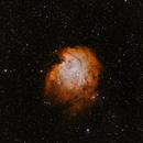 NGC2174 (Monkey Head Nebula),                                rupeshvarghese