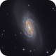 NGC 2903,                                Christoph Lichtblau
