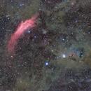 Around California and NGC1333,                                S.Nagahiro