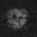 IC1396 - Elephant Trunk,                                Valerio Pardi