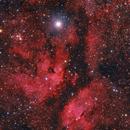 IC 1318 - The Butterfly Nebula,                                Frank Breslawski