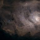 M8,                                Steven Elliott