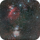 Orion medium field,                                Federico Bossi