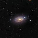 M-63 Sunflower Galaxy,                                Eddie_R