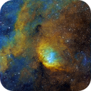 SH2-101 Tulip Nebula,                                Stefan Schimpf