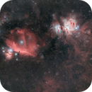 Center of Orion constellation with beautiful friends /  HaRGB,                                Nicolas MARTINO