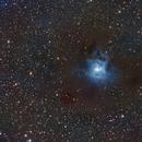 NGC 7023 IRIS Nebula,                                Eric Kallgren
