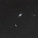 Family portrait M82,                                Joostie