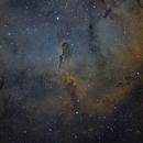 IC1396 Elephant Trunk,                                bilgebay