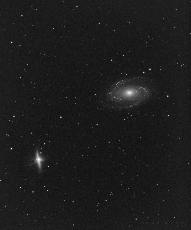 M 81 and M 82 H-alpha only,                                Paul Muskee