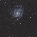 M101 - Galaxia espiral Pinwheel,                                Luis Martinez