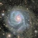 M101 deep field + Flux Nebula [Image of Team],                                Giuseppe Donatiello