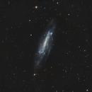NGC 4236,                                pirx13