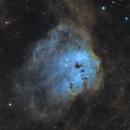 The Tadpole Nebula,                                Olivier Meersman