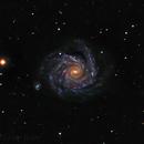 NGC 1232 closeup,                                Leslie Rose