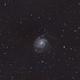 M101,                                Robin Uffer