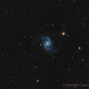 NGC 1566,                                Gerson Pinto