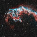 Eastern Veil NGC 6992,                                Michael Völker