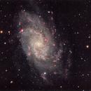 M33 - Triangulum,                                Clayton Bownds