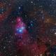 NGC 2264,                                Craig Prost