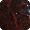 50 Panel Mosaic-  Messier 42 to Betelqeuse in the Orion Constellation,                                Matt Harbison