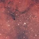 Elephant Trunk Nebula,                                Alessandro Iannacci