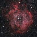 A Celestial Rose - NGC 2244,                                BrettWaller