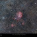 Running Chicken Nebula Wide Field View,                                Paul Baker