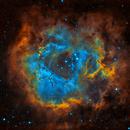 Rosette Nebula - Hubble Palette,                                Derek Foster
