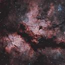 IC 1318 Sadr Region 20210602 25200s HOO 01.4.3,                                Allan Alaoui