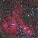 NGC 1968-74 (LMC),                                Joe