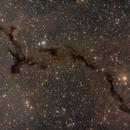 B150 Dark Seahorse LRGB,                                Nik Coli