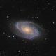 M81 in HaLRGB,                                Chuck's Astrophot...