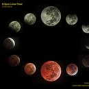 Total Eclipse mosaic,                                Carlos Alberto Pa...