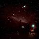 Horsehead & Flame Nebula,                                Pedalstartmyheart